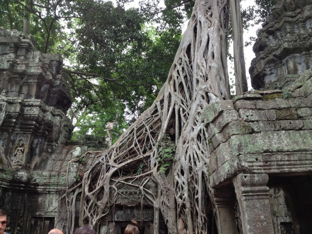 Ta Prohm (Tomb Raider Tempel)
