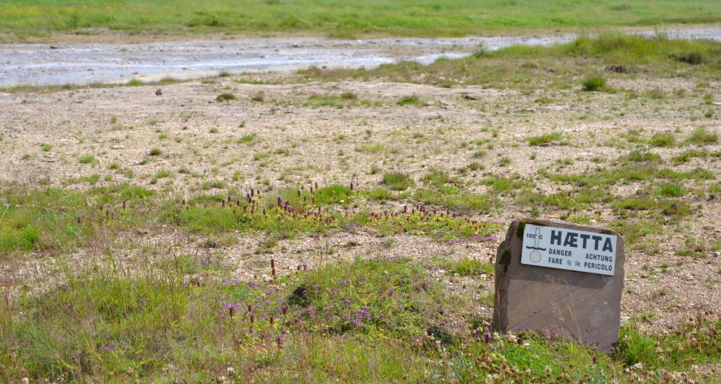 Schilder, die vor den heißen Quellen rund um den Großen Geysir und Strokkur warnen.
