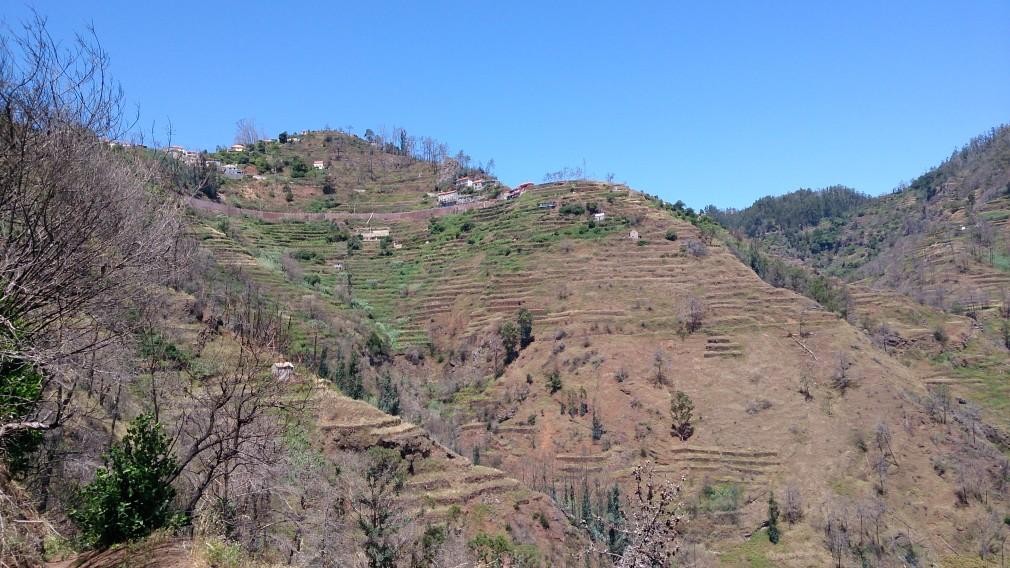Unterwegs auf der Levada von Assomada nach Camacha