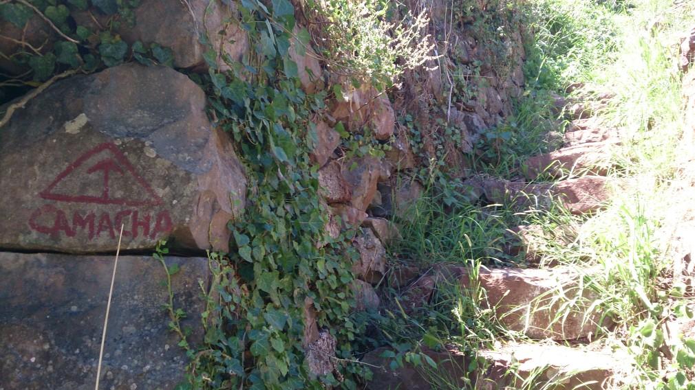 Leicht zu übersehen: An dieser Stelle wird die Levada verlassen, um nach Camacha zu gelangen.