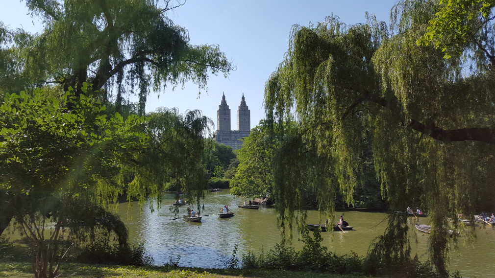 Central Park: The Lake
