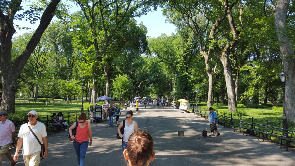 Central Park: The Mall