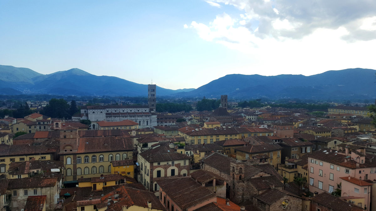Blick auf Lucca vom Torre Guinigi