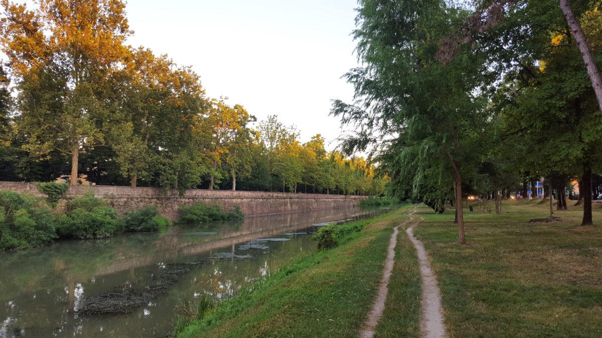 Am Fluss-/Kanalufer im Parco dei Cigni, Padua