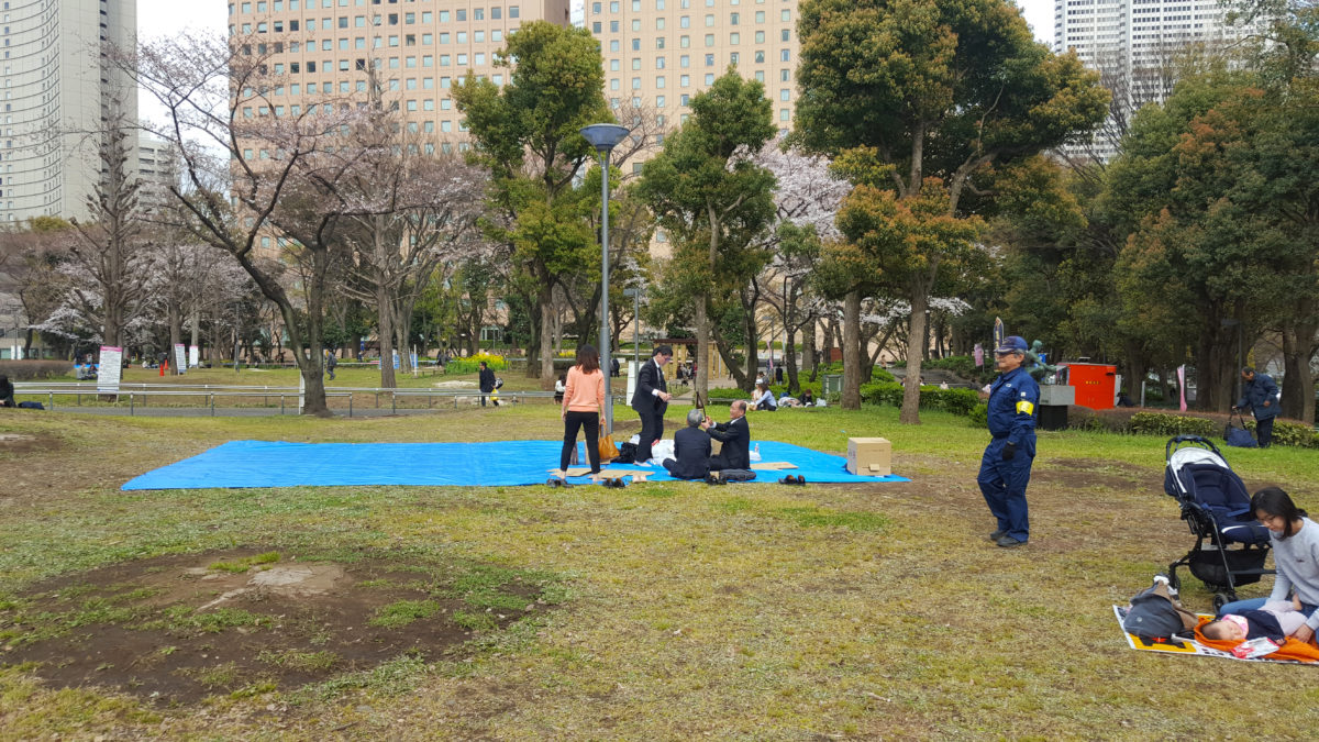 Sake-Picknick im Shinjuku Chuo Park