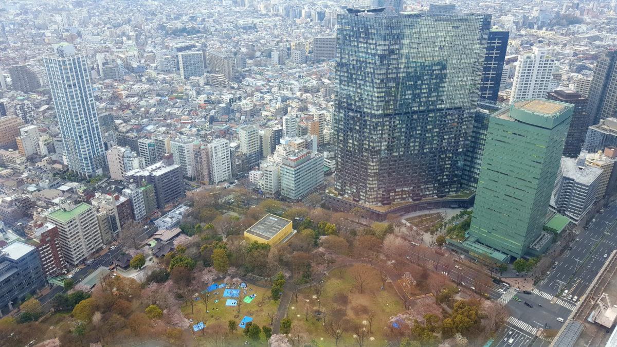 Blick auf den Shinjuku Chuo Park vom Tokyo Metropolitan Government Building