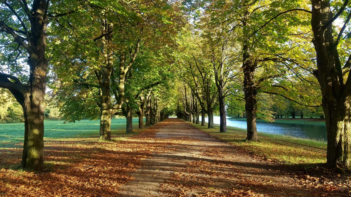 Decksteiner Weiher im Herbst